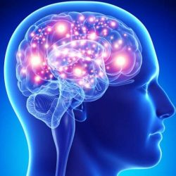 story-of-man-told-by-doctors-he-only-had-half-a-brain